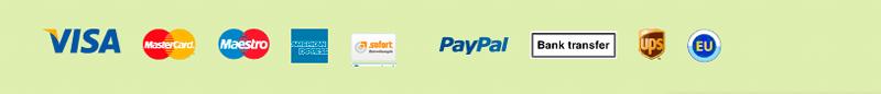 pay_worldticket